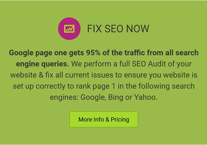 fixseonnow service from fixnowmedia.com
